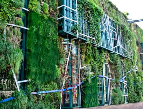 Edificación y ahorro energía: la clave de la construcción eficiente